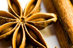 Anise macro Stock Photo