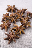Anise on Muslin Stock Photography