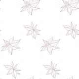 Anise pattern Stock Photo