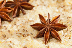 Anise scented salt Stock Photography