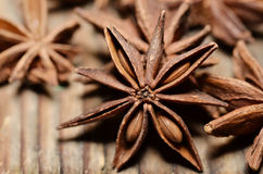 Anise Seed Royalty Free Stock Images
