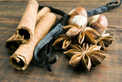Anise seed, cinnamon and vanilla Royalty Free Stock Images