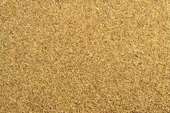 Anise Seed Texture Royalty-vrije Stock Afbeelding