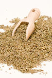 Anise seeds Stock Images
