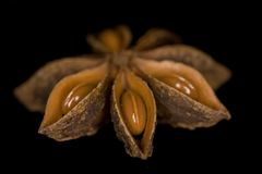 Anise seeds. Isolated on black Stock Photography