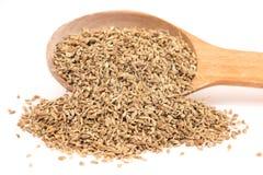 Free Anise Seeds Royalty Free Stock Photo - 63958285
