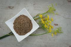 Anise seeds and flower on plate Royalty Free Stock Photography