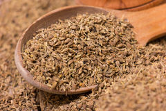 Anise Seeds Stock Photos