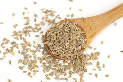 Anise seeds on white Royalty Free Stock Image