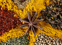 With anise Spice mix Stock Image