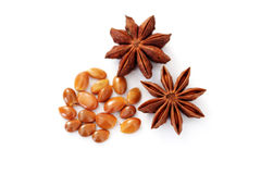 Anise star Royalty Free Stock Images