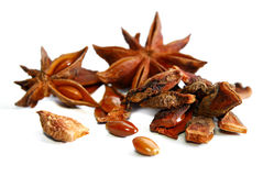 Anise Star Royalty Free Stock Image