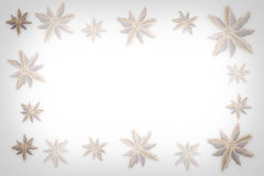 Anise star Stock Photos