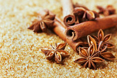 Anise star and cinnamon sticks on brown cane sugar Stock Photos