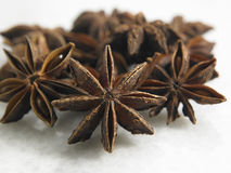 Anise star Stock Images
