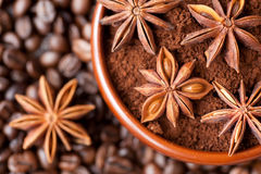 Anise Star, and coffee beans Royalty Free Stock Image