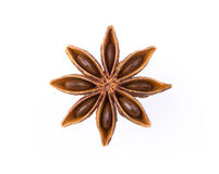 Anise star Stock Photography