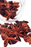 Anise star isolated on white Royalty Free Stock Photo