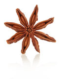The anise star Royalty Free Stock Images