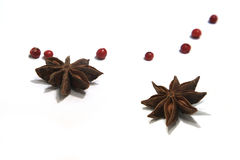 Anise star isolated on white background. Royalty Free Stock Photos