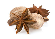 Anise star and nutmeg Stock Images