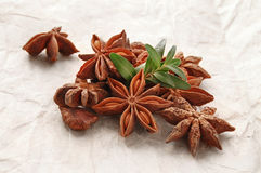 Anise star on the paper Stock Photos