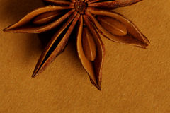 Anise - Star Shaped Indian Spice Royalty Free Stock Images