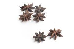 Anise Star Spice royalty-vrije stock fotografie