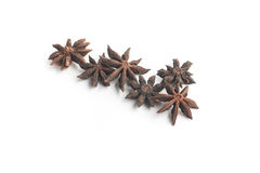 Anise Star Spice stock foto