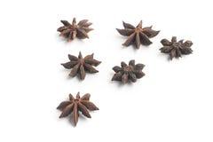 Anise Star Spice stock fotografie