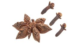 Anise star with clove royalty free stock photo