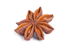 Anise star  on white background. Stock Photo