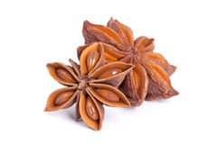 Anise star  on white background. Stock Photos