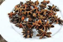 Anise star Stock Image