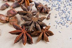 Anise stars Royalty Free Stock Photo