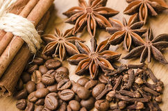 Anise stars and cinnamon Stock Image