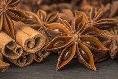 Anise stars and cinnamon sticks Stock Photography