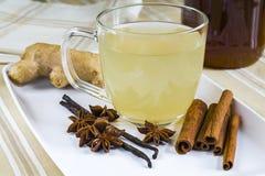 Anise stars, cinnamon, vanilla and fresh finger tea Royalty Free Stock Photography
