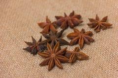 Anise stars Royalty Free Stock Photo