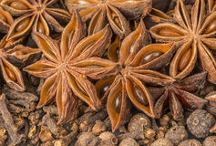 Anise stars, cloves, pimento and cinnamon sticks Stock Photography