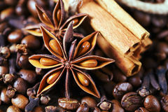 Anise stars, coffee beans, and cinnamon sticks. Exotic anise stars and cinnamon sticks on the background of coffee beans and cloves stock images