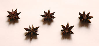 Anise stars. Five whole anise stars on a white background Royalty Free Stock Photography