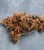 Anise Stars Spice Royalty-vrije Stock Foto's