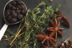 Anise stars, sprigs of thyme and juniper. Some anise stars, sprigs of thyme and juniper in metal teaspoon on old dark background. Selective focus Royalty Free Stock Images