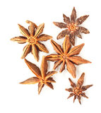 Anise stars on a white background Royalty Free Stock Image