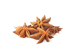 Anise stars on a white background Stock Image