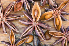 Anise tree star seeds Stock Photos