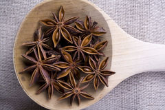 Anise on Wooden Spoon Stock Image