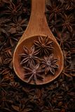 Anise in a wooden spoon. Top view. Copy space. Brown christmas food flavor aromatic spicy flavoring health dry anice closeup sweet indian plant light background royalty free stock photo