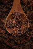 Anise in a wooden spoon. Top view. Copy space. Brown christmas food flavor aromatic spicy flavoring health dry anice closeup sweet indian plant light background royalty free stock image